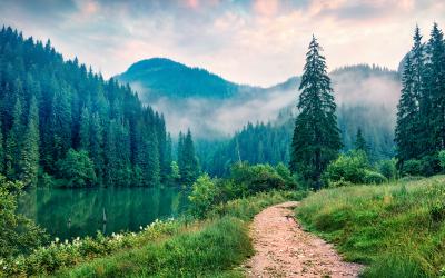 10 Mental Health Benefits of Nature | Mental Health Awareness Week
