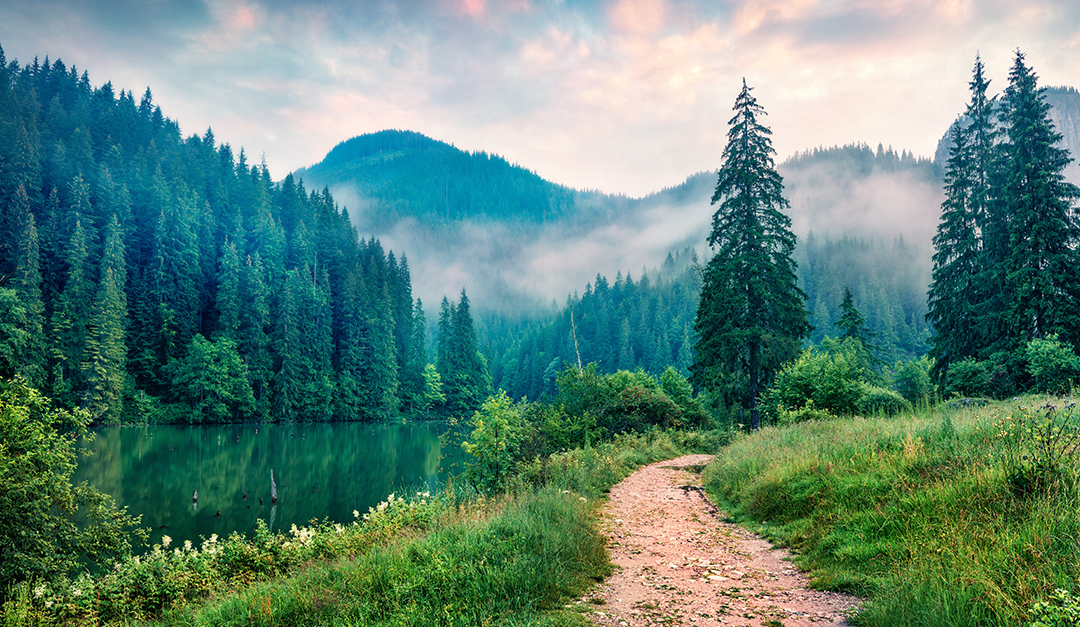How does nature benefit mental health?